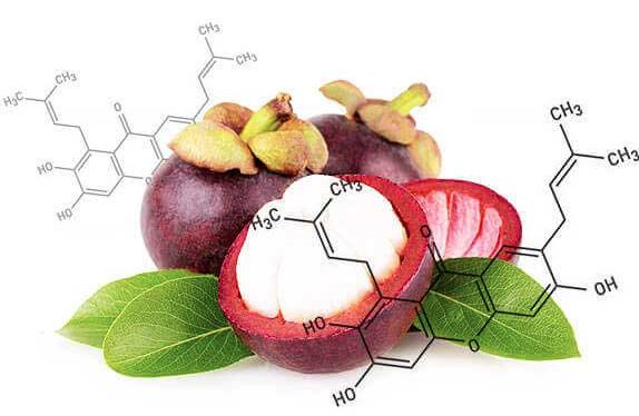 Mangosteen – bivirkninger