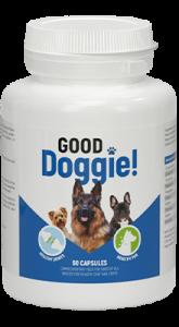Good Doggie - pris - køb - erfaring - virker det